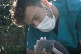 Başkan Akpolat'ta Hayvanları Koruma Günü mesajı
