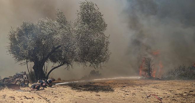 İBB ekiplerinden Manavgat, Marmaris ve Bodrum'daki yangınlarda mücadele