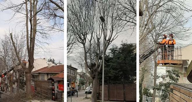 ÖZEL HABER: Beşiktaş'ta Park ve Bahçeler Müdürlüğü emekçileri kar kış dinlemiyor!