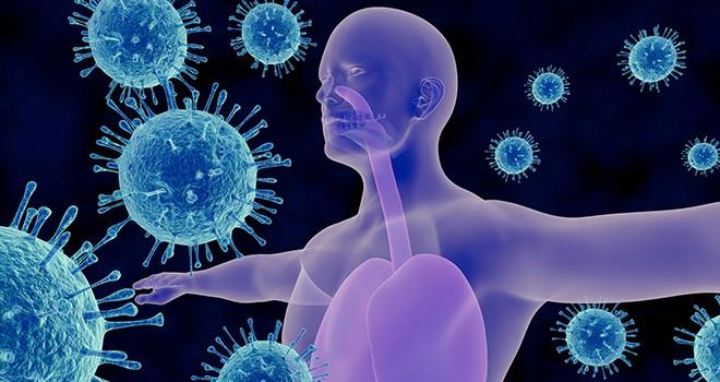 Koronavirüs için 4 bağışıklık teorisi