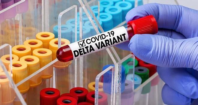 Bilim insanları henüz çözemedi! Delta Plus varyantında 4 gizem