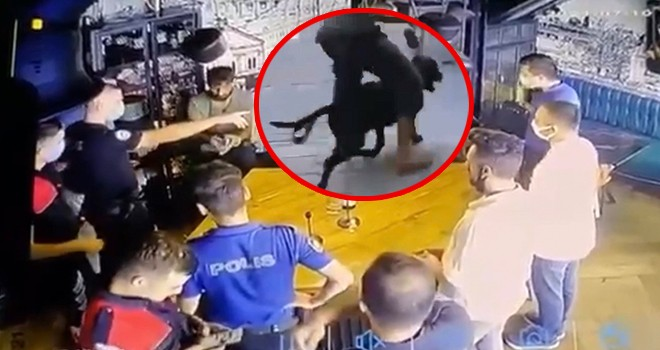 İş yerini dağıtıp köpeğini vatandaşların üzerine salan şahısı Beşiktaş Emniyeti yakaladı