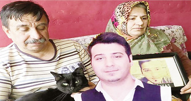 Terör kurbanı olan oğlunun kedisi onlara yadigar kaldı