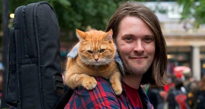 Evsiz bir adamın hayatını değiştiren kedi Bob yaşama veda etti