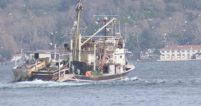 İstanbul'da 71 tekneye el konuldu