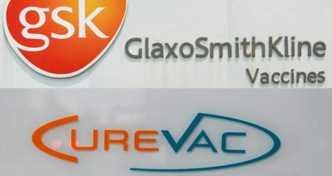 GSK ve CureVac'tan korona virüsün mutasyonlarına karşı ortak aşı