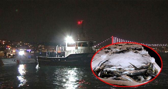 İstanbul'da balık avı yasağı! 11 milyon TL para cezası