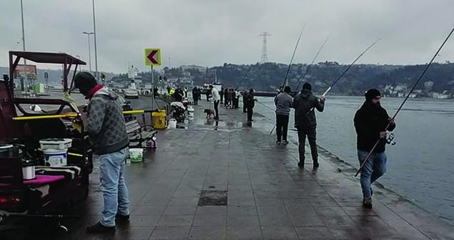 Müdürün uyarılarına rağmen balık tutmaya devam ettiler