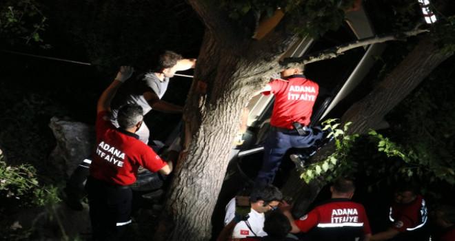 Adana'daki kazada otomobil ağaçta asılı kaldı