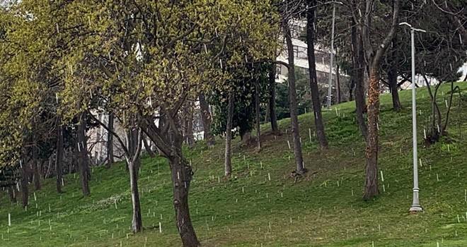 İstanbul'da sürpriz dolu ve kar yağışı