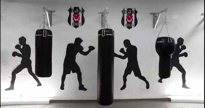 Beşiktaş'ın boks ve güreş şubelerinin yeni yeri Vodafone Park