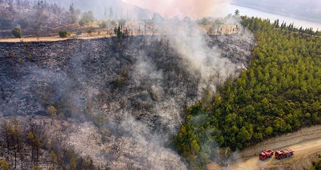 Türkiye'de yangında yok olan alan son 13 yılın yıllık ortalamasını geride bıraktı