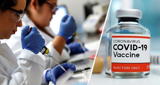 Korona aşısı için tarih verildi! En erken 2024