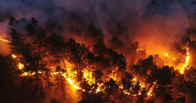 Türkiye'de yangın kabusu devam ediyor! İşte 10'uncu günde son durum