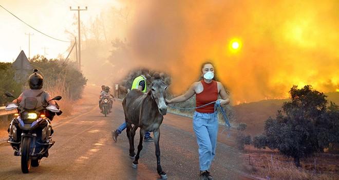 Kabus gibi!.. Yangınla mücadele sürüyor