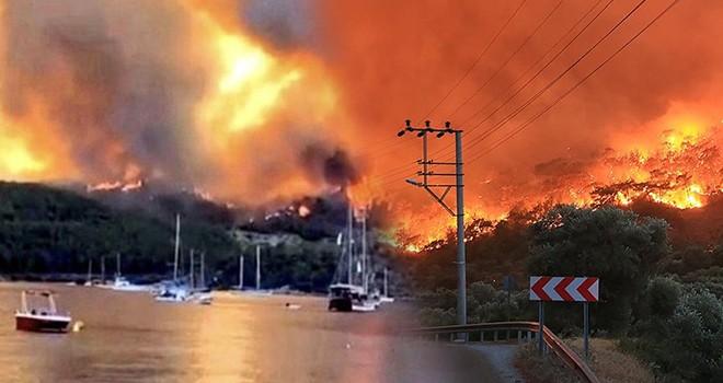 Milas'ta yanan bölge haritalandı! Acil yardım çağrısı
