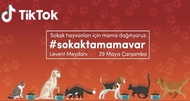 Sokak hayvanları için #sokaktamamavar kampanyası